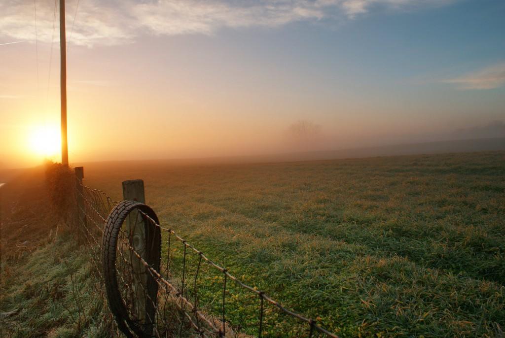 landscape, fence, sky