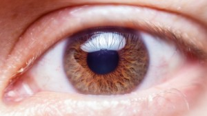 the photographer's eye, eyeball, brown eyes, eyelid, cornea, pupil, photographer