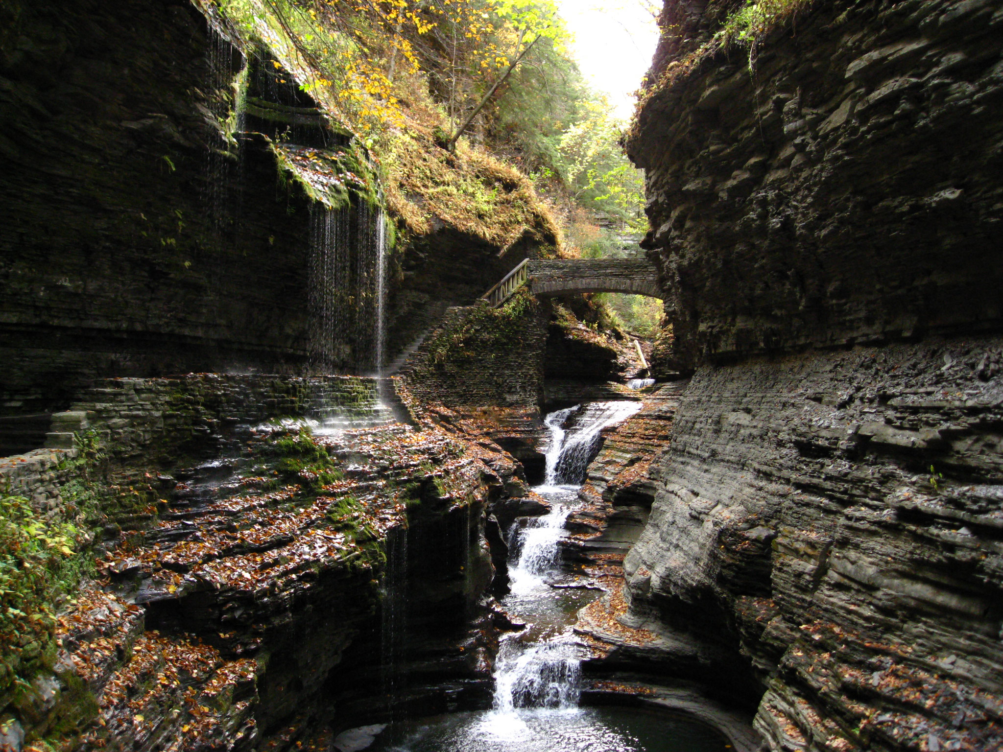 watkins glen, new york, upstate new york, on the road, chaos, pura vida,