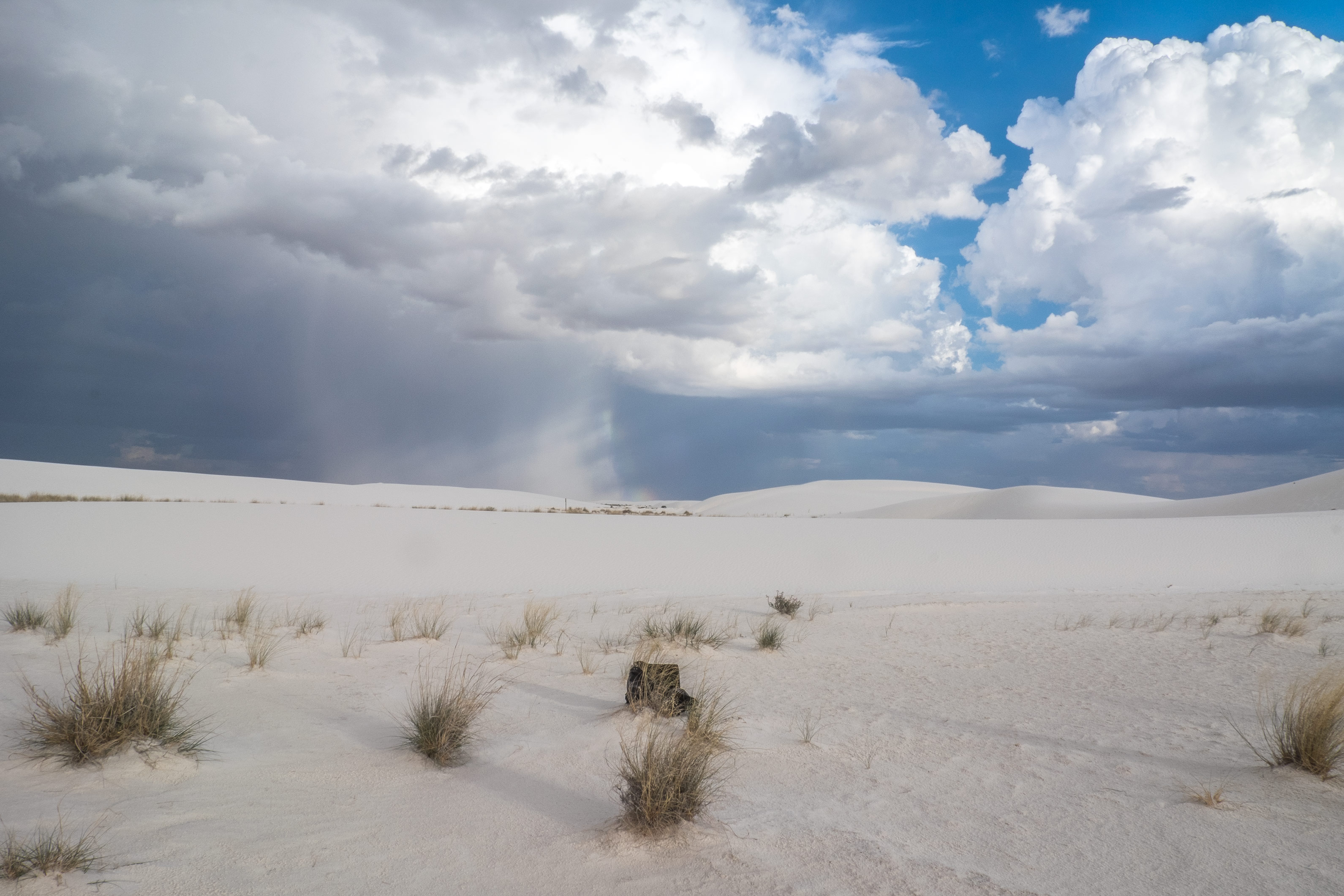 white sands national monument, new mexico, land of enchantment, alamogordo, photography, professional photographer,  sand dunes, white sand dunes, national park, national park service, NPS