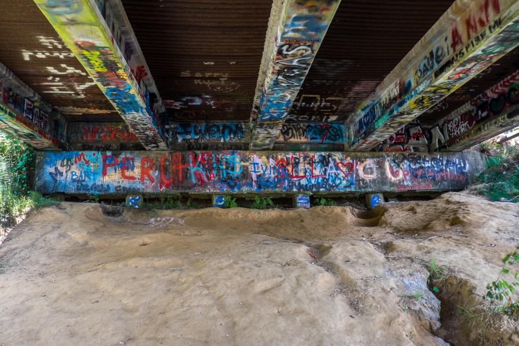 aberdeen, washington, kurt cobain, young street bridge, something in the way