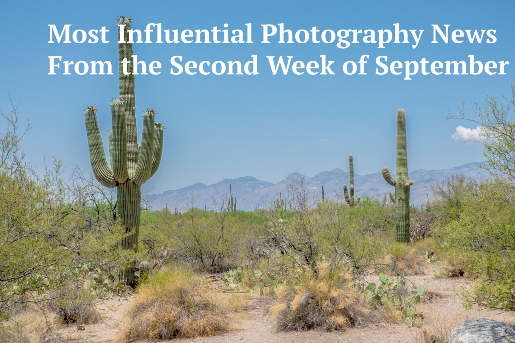 most influential photography news, saguaro national park, infographic with text, landscape with infographic, cacti