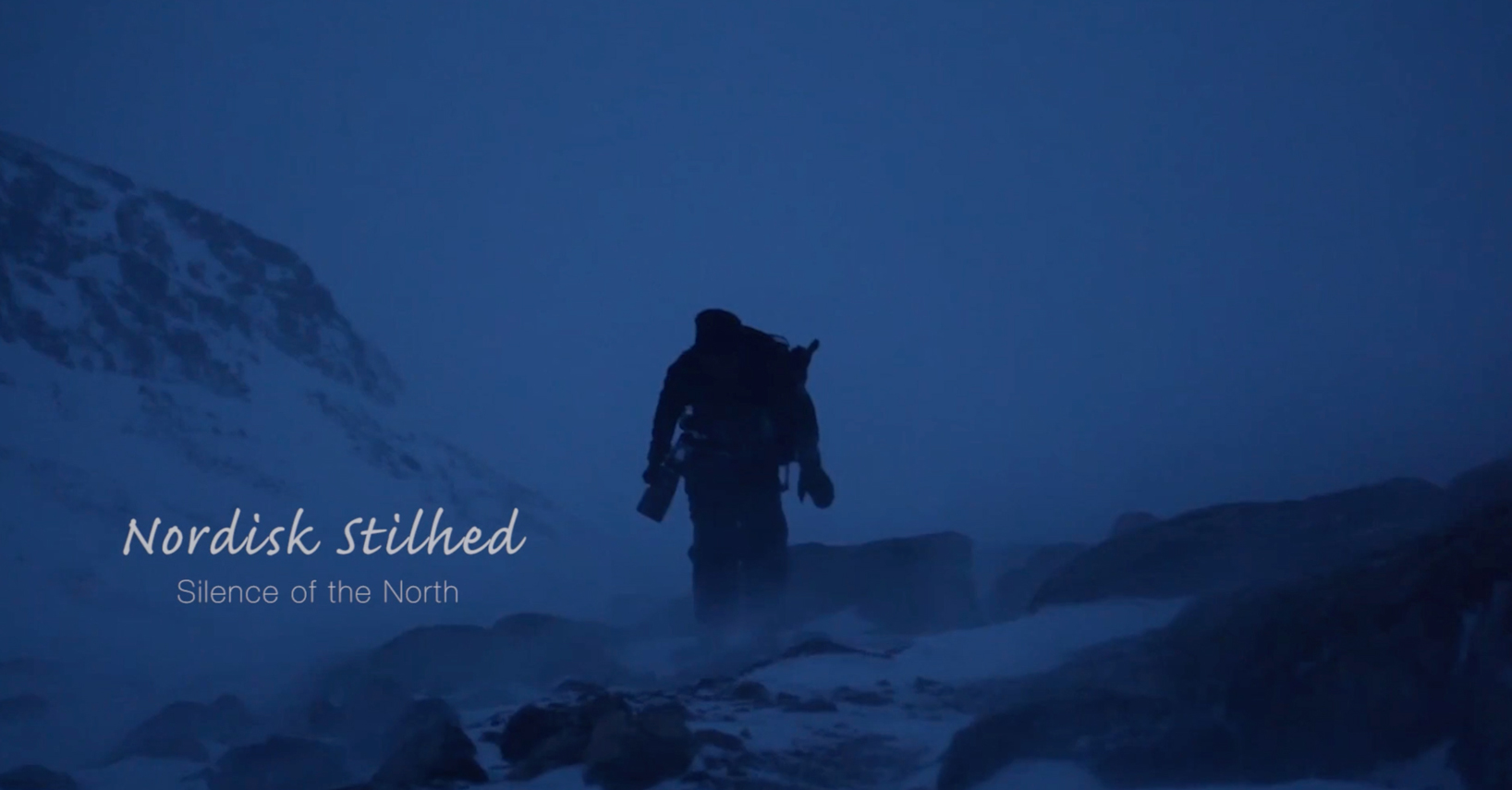 Wildlife photographer, morten hilmer, the silence of the north, video screenshot, the arctic